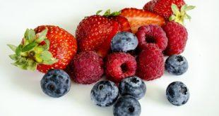 nierensteine ernährung